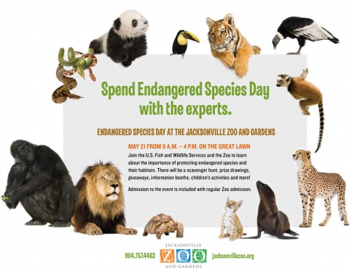 Jacksonville Zoo & Gardens – Endangered Species Day